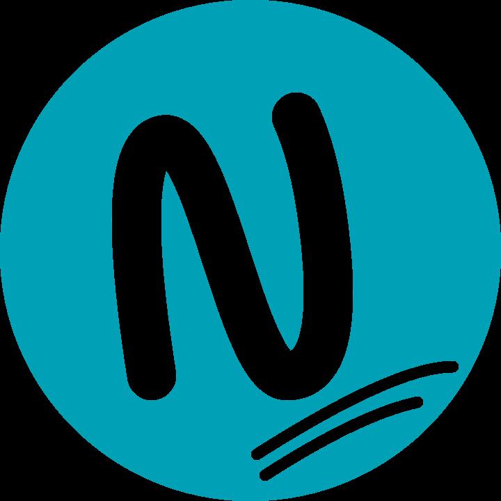 Nimbus Web Inc short logo colored png